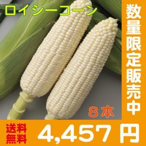 【予約中】しろいあま〜い450gの特大とうもろこしロイシーコーン2L 10本【送料無料】北海道産朝収穫即日発送 shun-choku