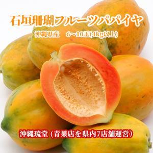 パパイヤ フルーツ 沖縄産 4Kg 石垣珊瑚 食べ方説明書付き