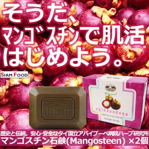 マンゴスチン石鹸 アバイブーベ国立病院 ハーブ研究所 Mangosteen Peel Soap 2個...
