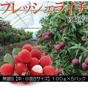 宮崎県産 フレッシュ ライチ 100g×5パック