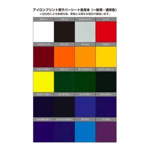 アイロンプリント用ラバーシート一般用(通常色) 210mm×50cm 【シルエットカメオ・クラフトロボ対応】