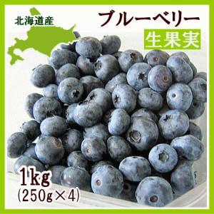 ブルーベリー(生果実)1Kg(250g×4) /北海道産 出荷時期:8月