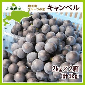 キャンベル(黒ぶどう)4Kg(10房前後)北海道産 出荷時期...