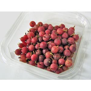 グーズベリー(グスベリ・生果実)250g×2(500g)北海道産 出荷時期:8月