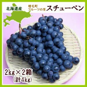 スチューベン(黒ぶどう ) 4Kg(8〜10房)北海道産 出...