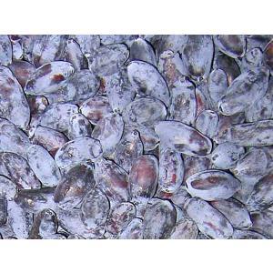 ハスカップ(冷凍果実)500g(250g×2) 北海道産