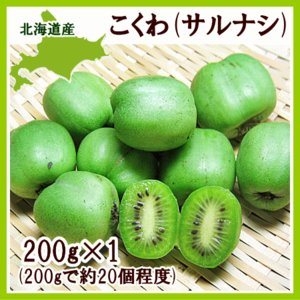 コクワ(サルナシ)200g×1パック 北海道産 こくわ 出荷時期:9月