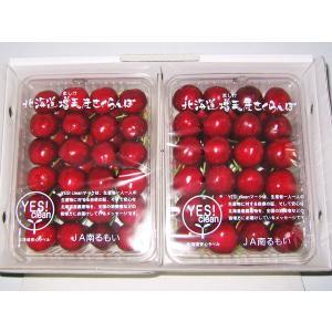 サミット(2L) 1kg (500g×2) 北海道増毛産 さ...