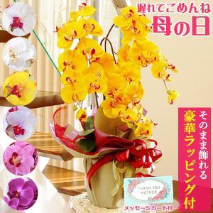 胡蝶蘭 造花 シルクフラワーの優雅で高貴な胡蝶蘭の鉢植 3本立 CT触媒 光触媒 ギフト|silkflower