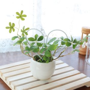 フェイクグリーン ラブリーハートのプチグリーン シュガーバイン 造花 CT触媒|silkflower