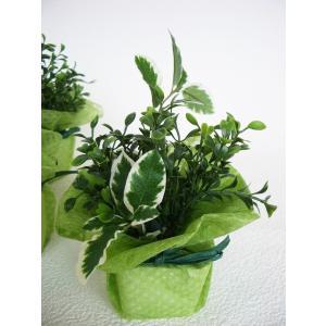 観葉植物 造花 グリーンのプチポット5個セット フェイクグリーン CT触媒 silkflower