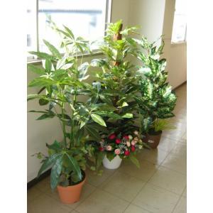 観葉植物 大型 フェイク インテリアグリーン3本入福袋 snb CT触媒|silkflower