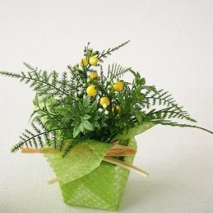 観葉植物 造花 アスパラガスとベリーのプチポット5個セット フェイクグリーン CT触媒 silkflower