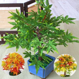 造花 盆栽仕立てのもみじ シルクフラワー CT触媒 silkflower