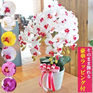 造花 胡蝶蘭 常滑産陶製鉢に入った気品あふれるシルクフラワーの胡蝶蘭の鉢植 5本立 CT触媒 光触媒
