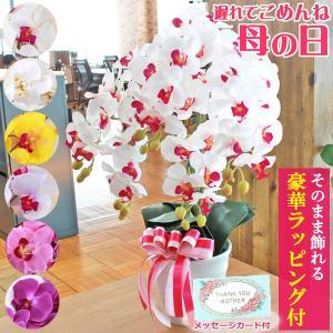 造花 胡蝶蘭 常滑産陶製鉢に入った気品あふれるシルクフラワーの胡蝶蘭の鉢植 5本立 CT触媒 光触媒|silkflower