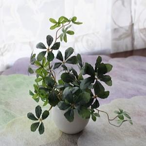 プチフェイクグリーンアレンジ シュガーバイン 観葉植物 造花 CT触媒
