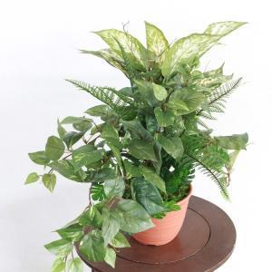 観葉植物 造花 アクラオネマ&ポトスの鉢植40 フェイクグリーン CT触媒 silkflower