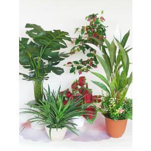 造花 ミドルインテリアグリーン福袋 シルクフラワー CT触媒|silkflower