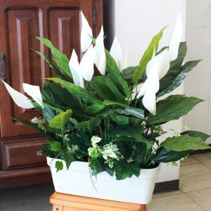 観葉植物 造花 スパティフィラムのやすらぐインテリアグリーン 60 VP1415 CT触媒 silkflower