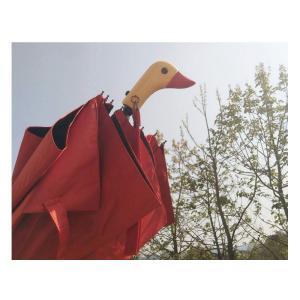 折りたたみ傘  遮光 折り畳み 折りたたみ 軽量 UVカット 紫外線対策 レディース  可愛い アヒル柄  日傘 晴雨兼用|silkroad2014|06