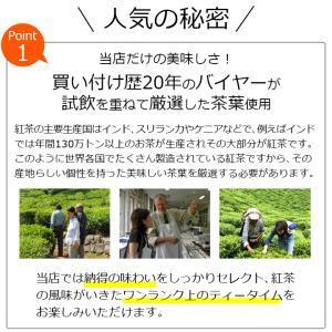 紅茶 ティーバッグ10個入りパック セイロン キャンディ ブレンド|silverpot-tea|04