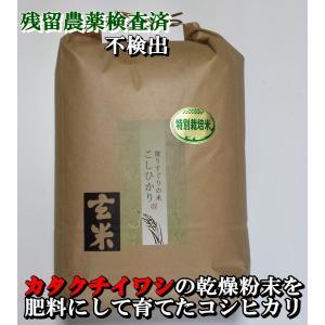 お米 20kg コシヒカリ 玄米 特別栽培米 平成29年産 ...