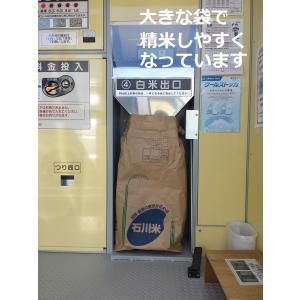 お米 玄米 10kg コシヒカリ 新米 30年産 石川県白山市 1等|simizunouen|03