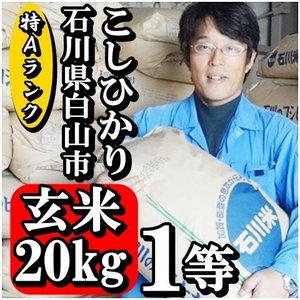 お米 20kg 玄米 コシヒカリ 新米 28年産 特Aランク 石川県白山市 1等 小分けセット(10kg×2個)