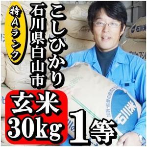 お米 玄米 30kg 新米 28年産 コシヒカリ 30kg 特Aランク 石川県白山市 1等 小分けセット(玄米10kg×3個)