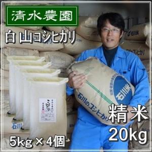 お米 20kg 5kg×4個セット 白米 コシヒカリ 28年...