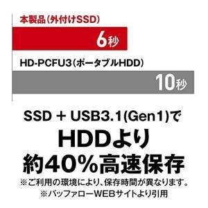 BUFFALO 耐振動・耐衝撃 日本製 USB3.1(Gen1) 対応 小型ポータブルSSD 120GB ブラック SSD-PL120U3-BK/N simpleplan
