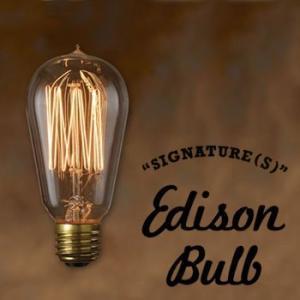 おもしろ 雑貨 インテリア エジソンバルブ Edison Bulb SIGNATURE Sサイズ タ...