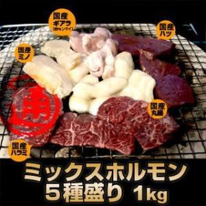 国産牛 ホルモン 焼肉セット 5種盛り 1kg 送料無料 丸腸 / ハラミ / 赤センマイ (ギアラ) / ミノ / ハツ  各200g  国産 焼肉 焼肉セット|singaki-meat