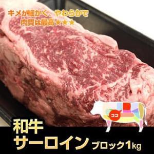 牛肉  九州産 和牛 サーロイン ブロック 1kg  ステーキ に ローストビーフ に 国産 九州産 ブロック|singaki-meat