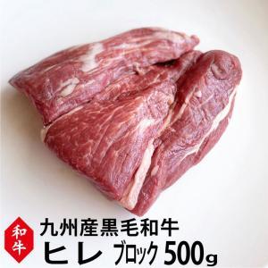 【九州産】和牛ヒレ肉ブロック500g ステーキに!ローストビーフに【牛肉 ブロック】【黒毛和牛】|singaki-meat