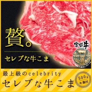 牛肉 セレブな宮崎牛こま500g 送料無料|singaki-meat