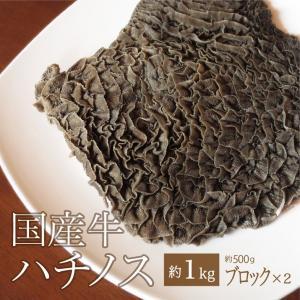 ホルモン 国産牛 ハチノス ブロック 約1kg(500g×2真空パック) 煮込み 焼肉|singaki-meat
