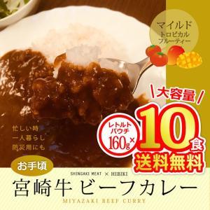 牛肉 宮崎牛 ビーフカレー160g×10食分 送料無料 singaki-meat