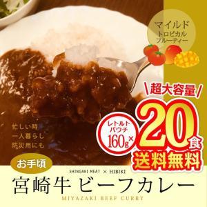 牛肉 宮崎牛 ビーフカレー 160g×20食分 singaki-meat