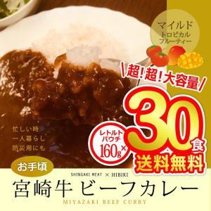 牛肉 宮崎牛 ビーフカレー 160g×30食分 singaki-meat