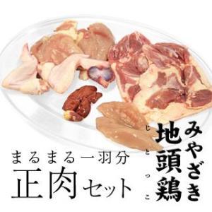 宮崎県産 1羽分 正肉 セット みやざき 地頭鶏 まるまる singaki-meat