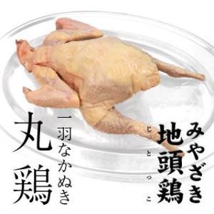 宮崎県産 みやざき 地頭鶏 丸鶏1羽 送料無料 singaki-meat