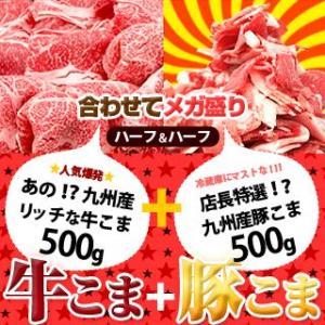 牛肉 豚肉 九州産 リッチ な 牛こま + 九州産 特選★ 豚こま 500gコンビでメガ盛り1kg|singaki-meat