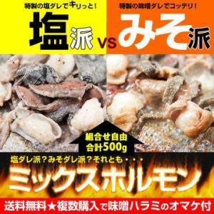 ミックスホルモン 選べる 「塩ダレ」「味噌ダレ」「味付け無し」 送料無料 ♪選んで合計500g|singaki-meat
