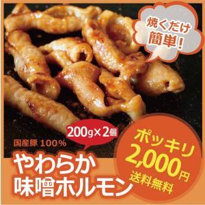 昔ながらの やわらか 味噌 ホルモン 400g★2個以上でオマケ付|singaki-meat