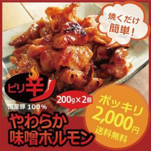昔ながらの ピリ辛 ホルモン 400g ★2個以上でオマケ付|singaki-meat