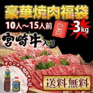 牛肉 宮崎牛 入りの豪華! 焼肉 バーベキューセット 3kg 送料無料 +オマケ付き 和牛 黒毛和牛 九州産 宮崎県産|singaki-meat
