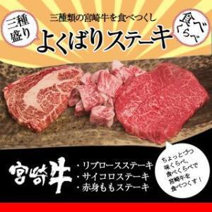 牛肉 宮崎牛 よくばり ステーキ 三種盛り 送料無料 和牛 黒毛和牛|singaki-meat