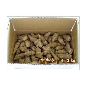 生菊芋 【生キクイモ】 3kg (土付き) クール便送料込み|sirakabanouen
